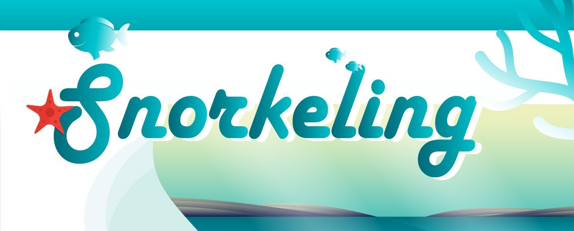 Snorkeling Guide